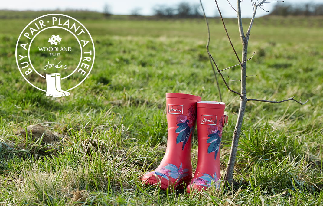 Buy a pair of wellies, plant a tree