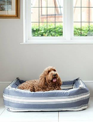 Dartmouth Dog bed