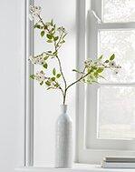 Plants & Artificial Flowers
