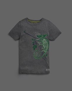 Joules UK Ray Older Boys Glow In The Dark T-Shirt 3-12 Yr GREY CHAMELEON